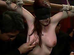 Stream Porn Movies